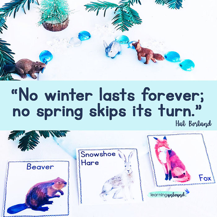 Winter Woodland kit by Learning Unbound